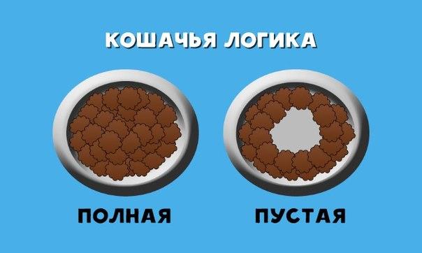 www.Ruspeach.com – Russian for foreigners
