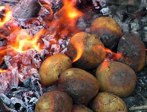 Печеная картошка на костре