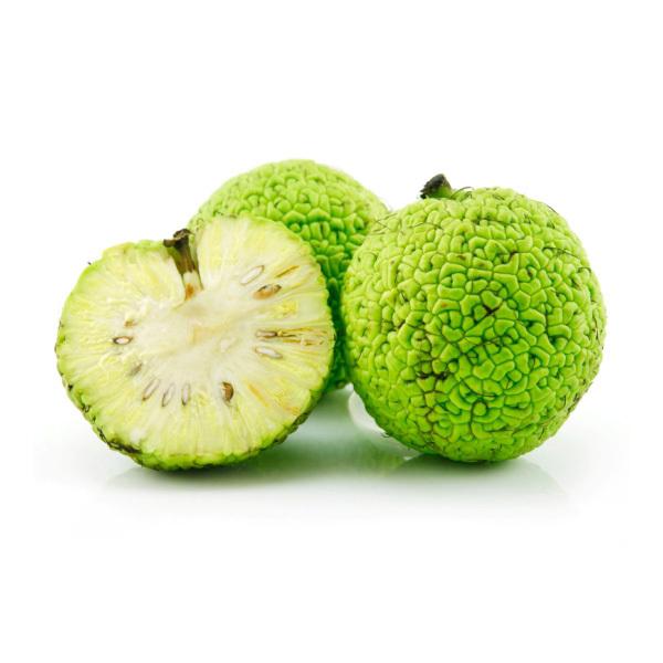 Адамово яблоко рецепт настойки для суставов фото