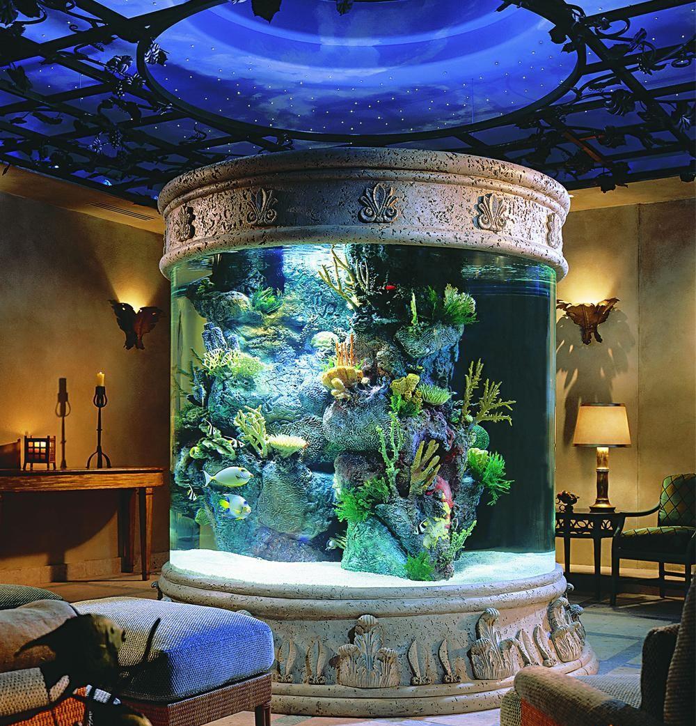 Первые аквариумы