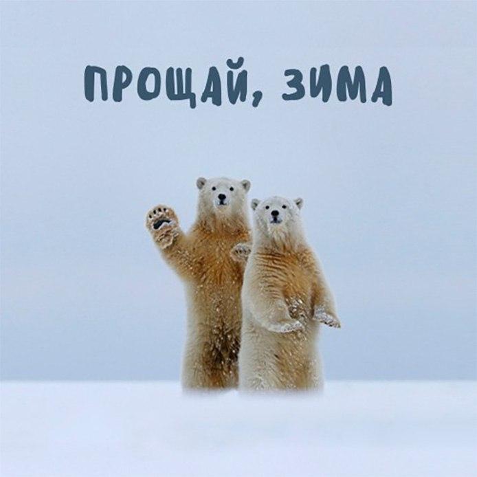 Прощай, Зима